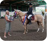 Showjumping Champion Brook Farm 2012 Image 3